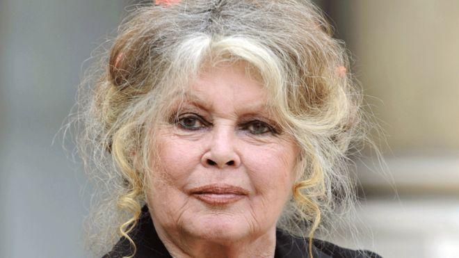 Johnny Hallyday estate: Bardot wades into France family row